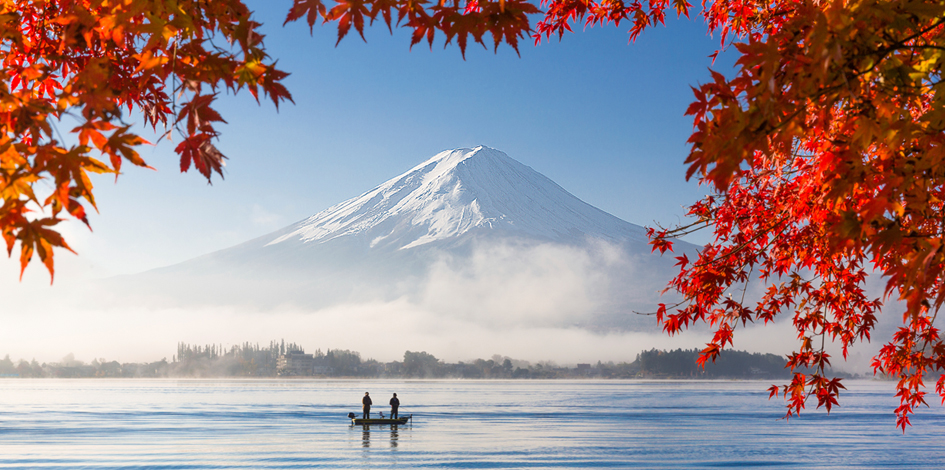 Outlook 2016: Japanese Equities
