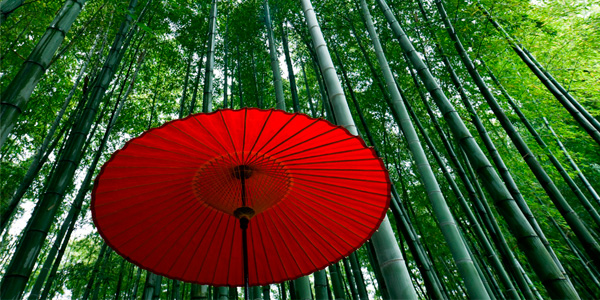 Japanese equities: Looking beyond the recent highs