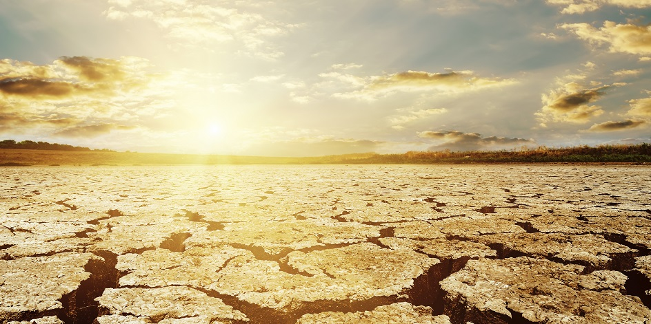 Schroders climate change survey: economists expect inflationary impact
